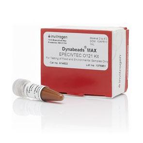 Sample preparation Dynabeads